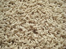 friezecarpet